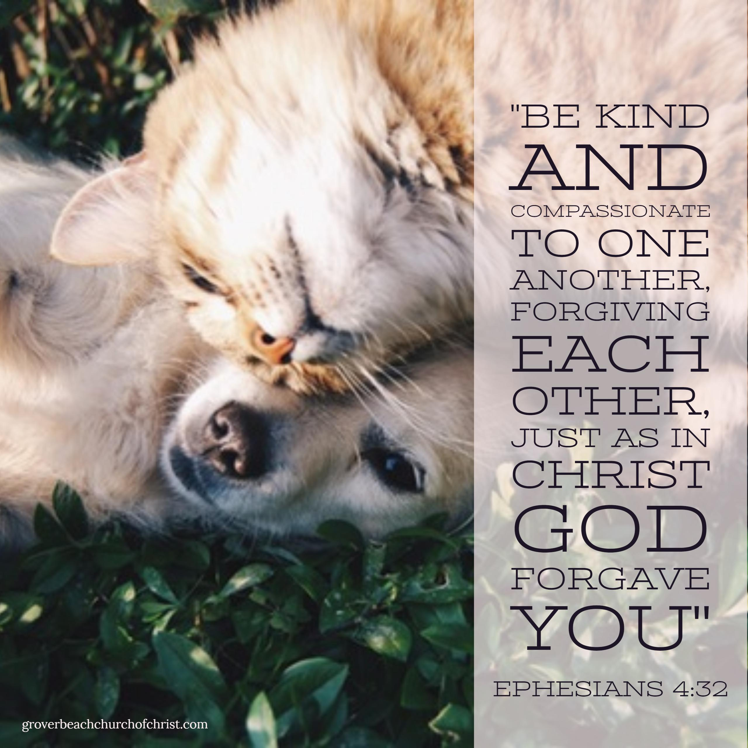 ephesians-4-32-be-kind-and-compassionate