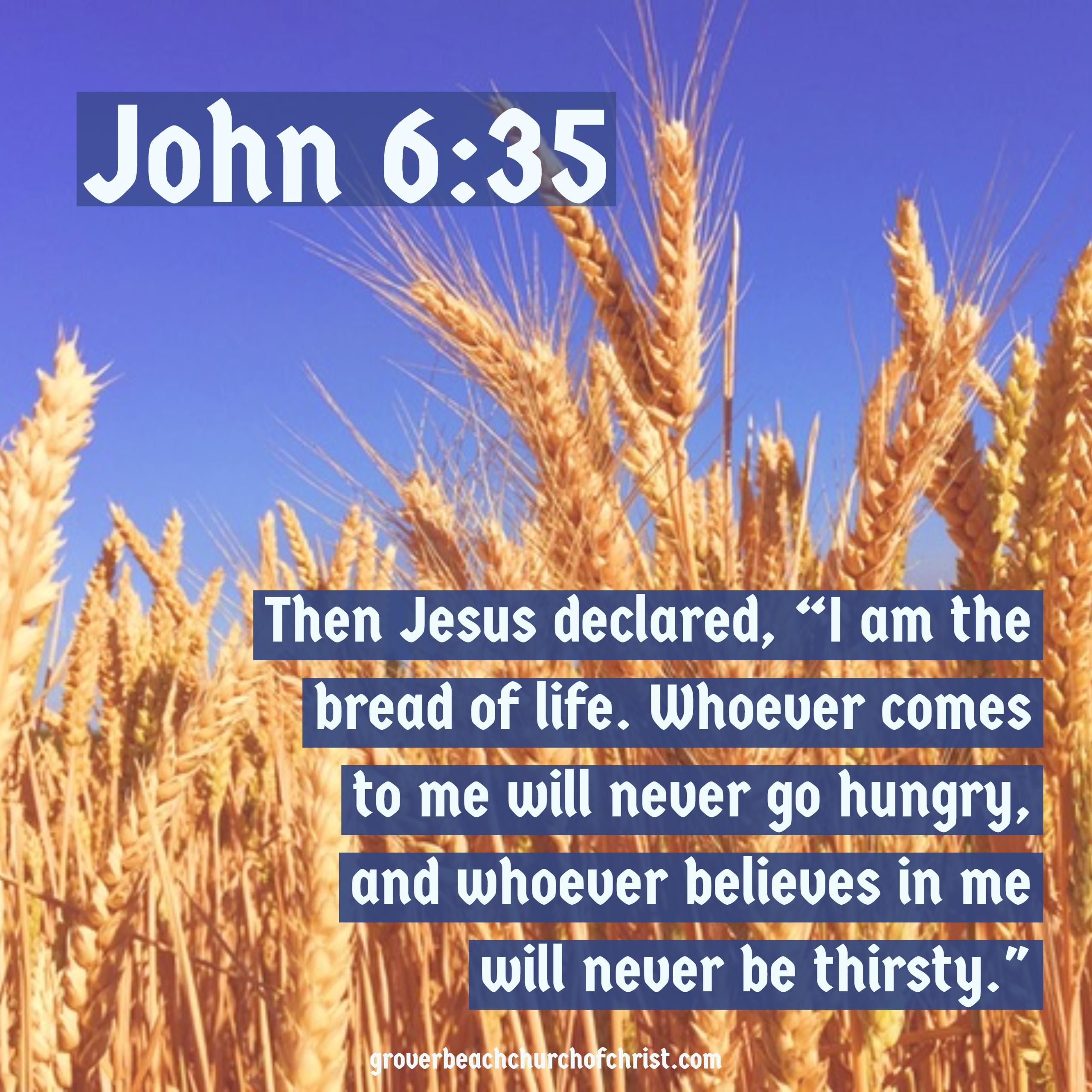 John 6-35 Then Jesus declared