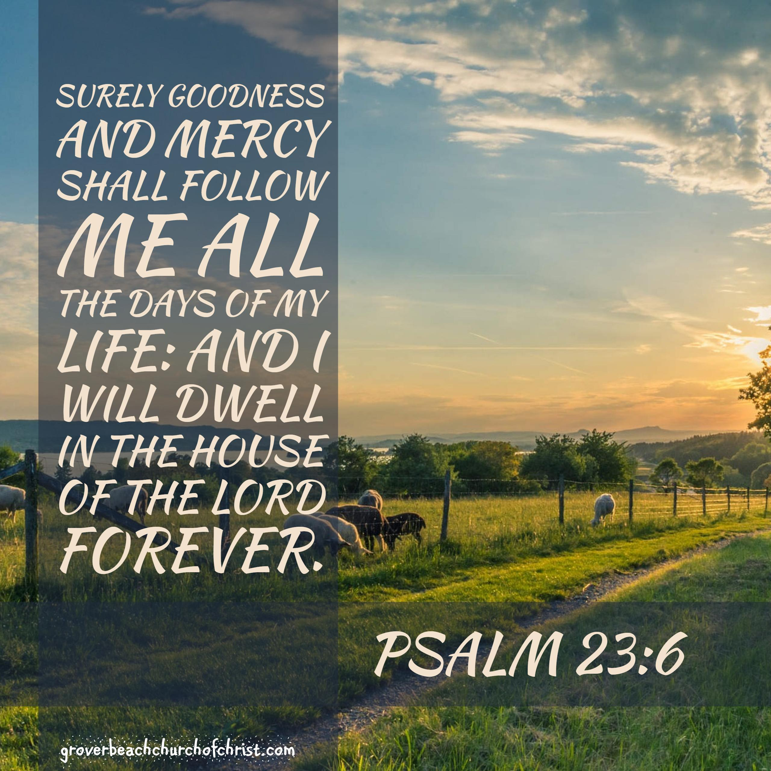 Psalm 23:6 Surely goodness and mercy