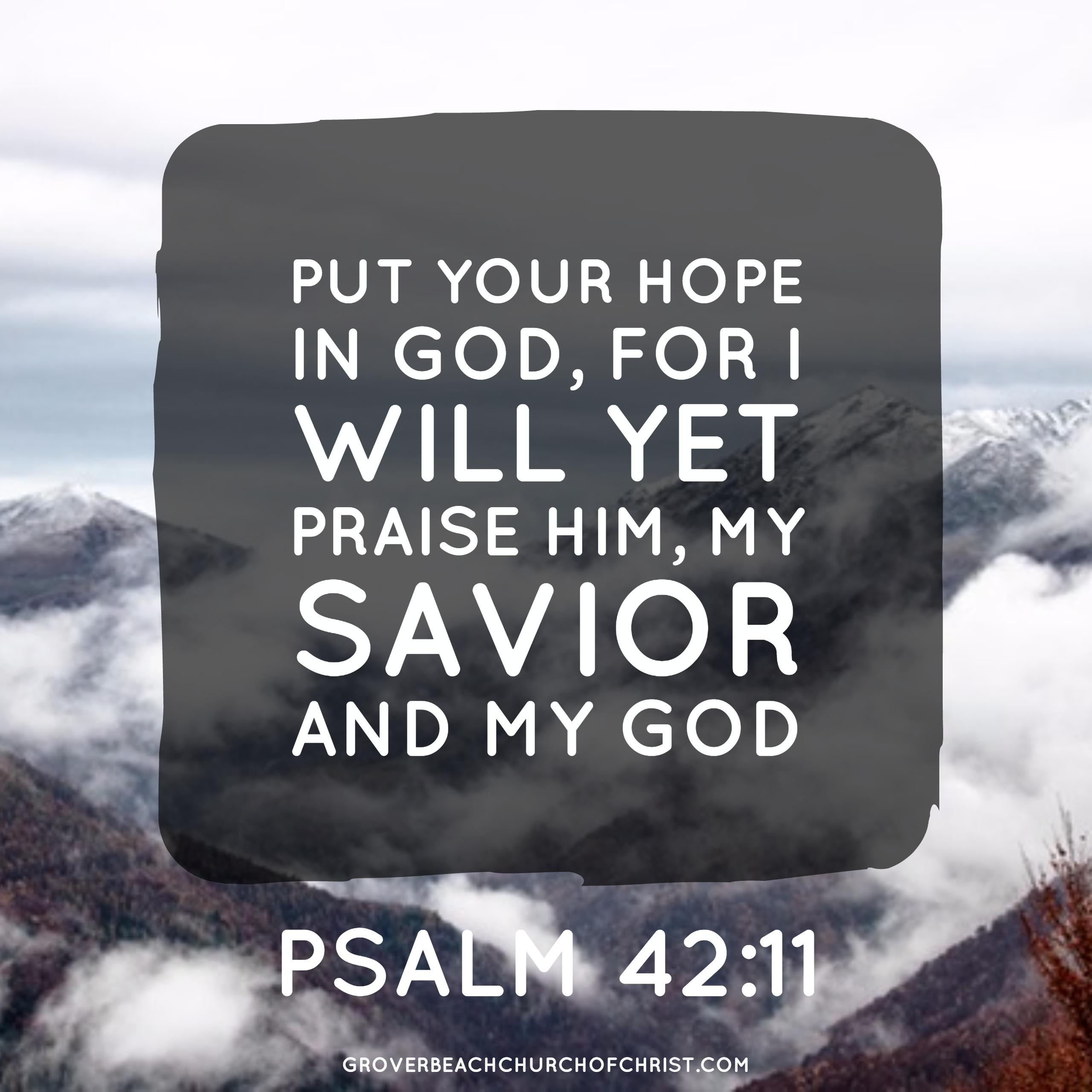 Psalm 42-11 Put your hope in God