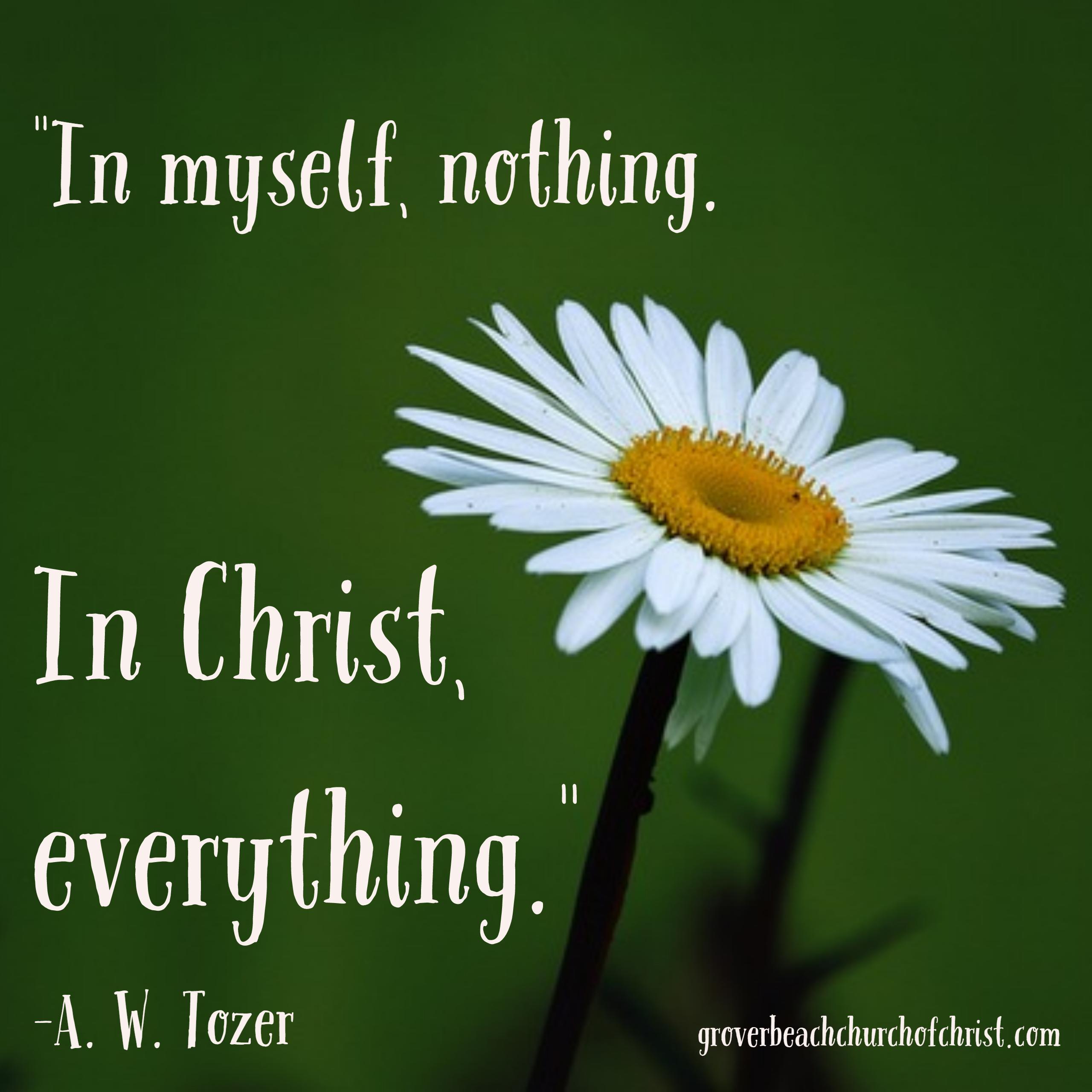 Tozer In myself nothing